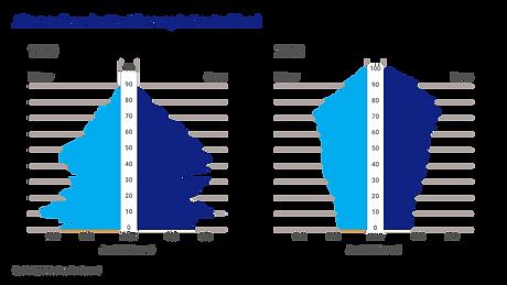 Demografischer Wandel.png