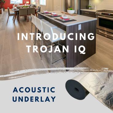 Introducing Trojan IQ!