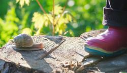 Nursery-in-plaxtol-playground