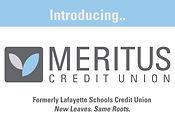 credit union logo.jpg