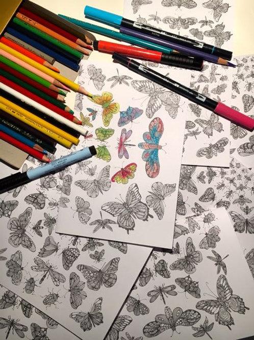 CYO Insect Kaleidoscope