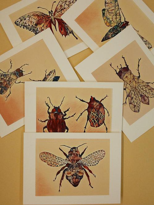 Tanish Bugs