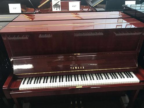 """Yamaha U-1 Cherry Polished Studio 48"""""""