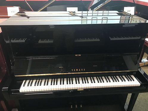 "Yamaha U-3 Ebony Polish Studio 52"""