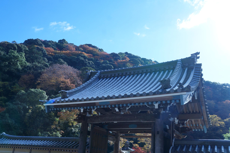 瀧安寺山門