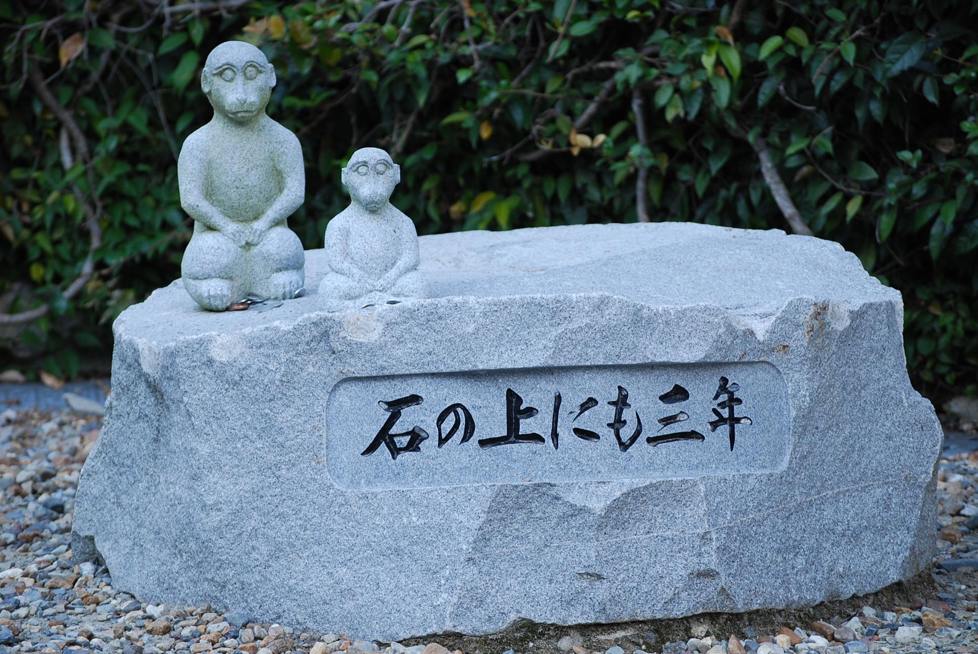 瀧安寺の猿