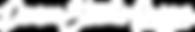 DSO_Logo_White_Horizontal.png
