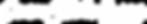 DSO_Logo_Main_HorizontalWhite.png