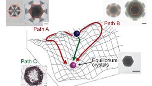 Discovery of novel MOF growth pathways using microfluidics