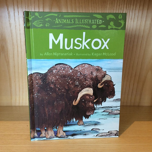 Animals Illustrated Muskox Book
