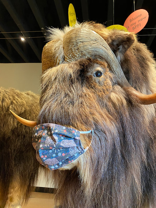 Musk Ox Face Mask