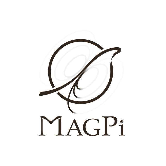 Magnetic of Planet Interior LOGO