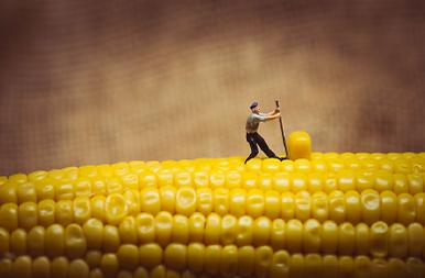 Mini People_Corn.png