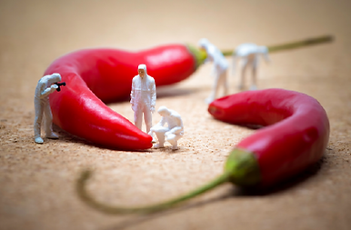 Mini People_Chilli_Red.png