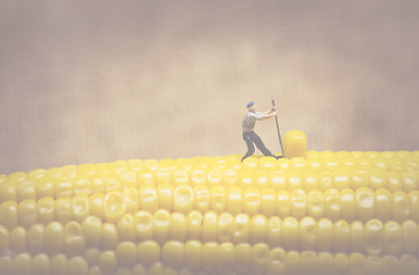 Mini People_Corn_opaque.png