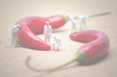 Mini People_Chilli_Red_Opaque.png