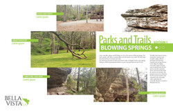 Blowing Springs Layout Concept 1