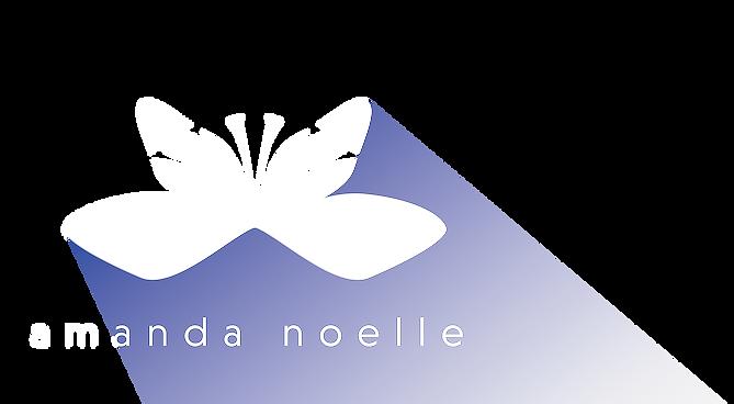 Amanda Noelle Design Logo
