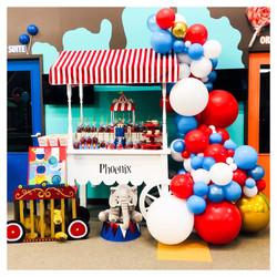Toronto Balloons | Balloon Garland