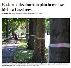 bostonbacksdown.jpg