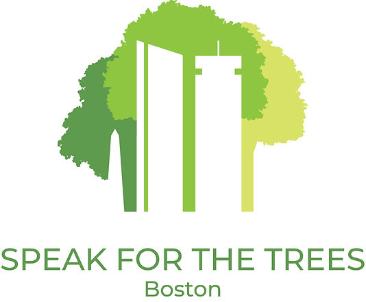 Skyline Boston with trees Speak for the Trees Boston