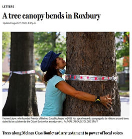 Yvonne Lalyre hugs a tree on Melnea Cass Boulevard with a ribbon tied around it