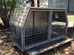 Custom Dog Box