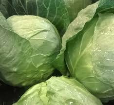 Cabbage-Green