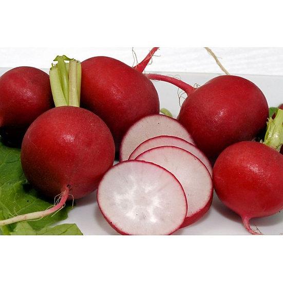 Red radish(NO TOPS)