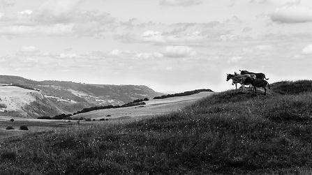 Rando_Auvergne_Aout2016-8.jpg