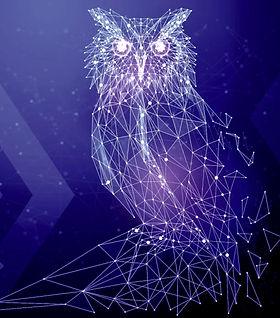 Owl%20Geo_edited.jpg