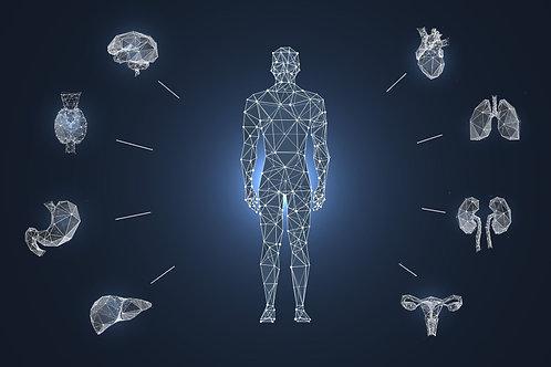 Quantum Biofeedback Consultation