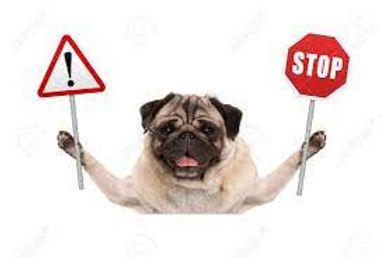 hond stop.jpg