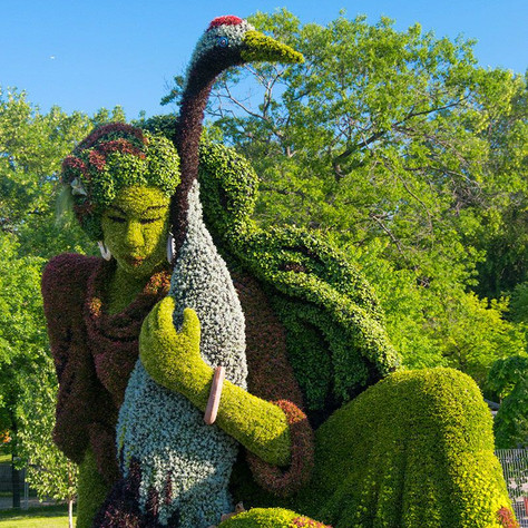 Teinture végétale : L'art vegetal
