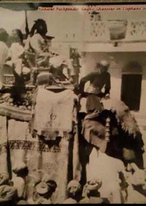 Vijay Mangal in Ghanerao being riden by Thakur Pushpendra Singhji