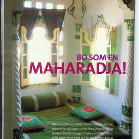 SHEESH MAHAL IN HENNES