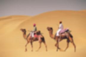 thar-desert-in-rajasthan.jpg