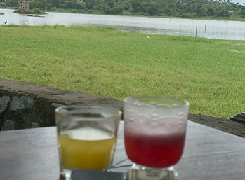 Romance of juices colors and flavours of india