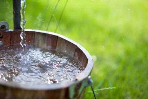Harvesting Rainwater Presentation