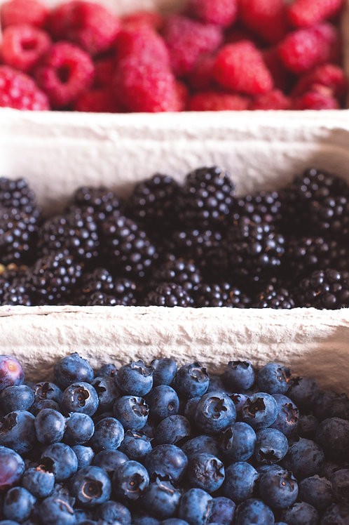 Getting started w/ Raspberries, Blackberries and Blueberries - May 18