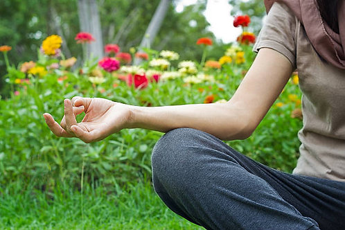Yoga in The Garden with Dahlias Sept 17 4 PM