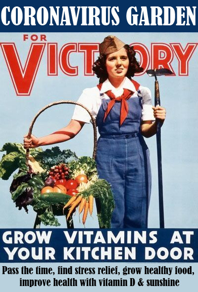 Victory (Over the Virus) Garden