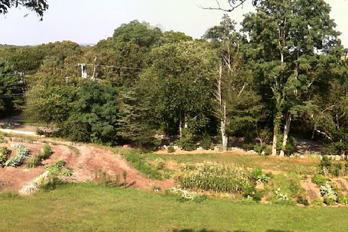 Permaculture Garden Tours -June 1