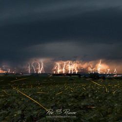 Fireflies and Lightning