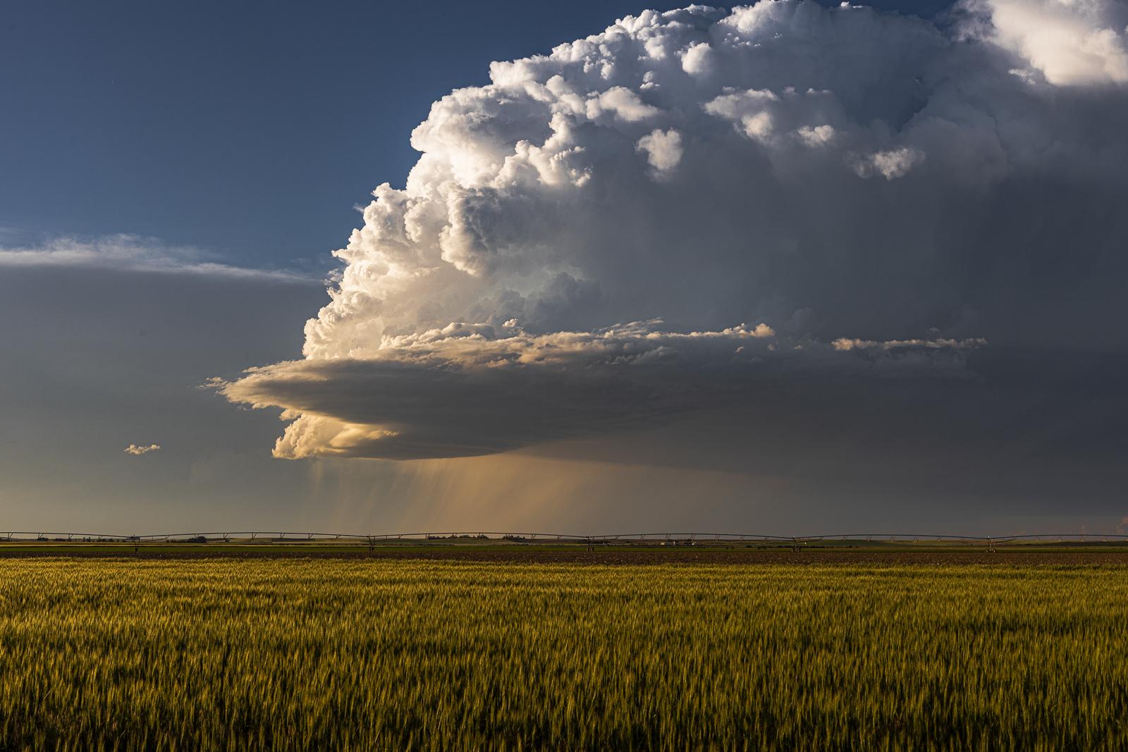 Beautiful Shelf Cloud