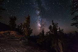 Bristlecone Pines Milkyway.jpg