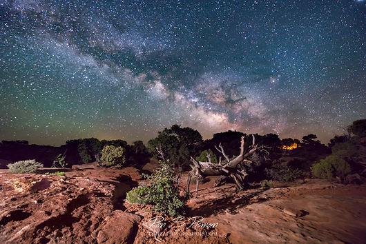 Needles Overlook Milky Way Scene.jpg