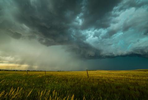 1920_Grass_Storm.jpg