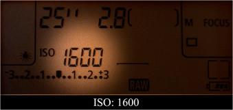 iso1600[1].jpg
