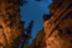 Bryce Canyon Below (smaller).jpg